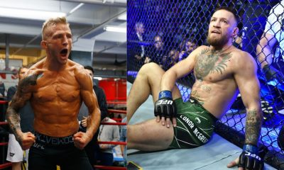 Dillashaw and McGregor