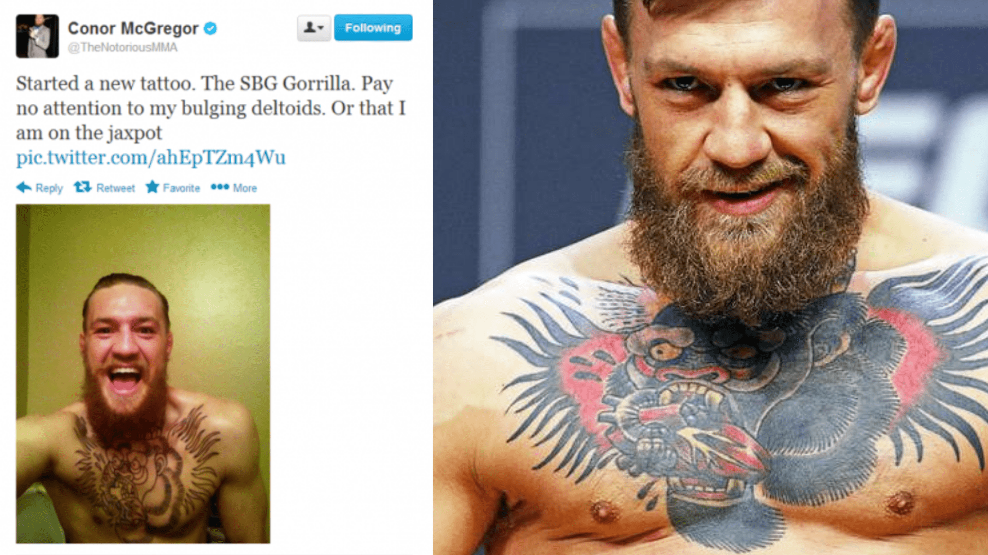 Conor McGregor's gorilla tattoo