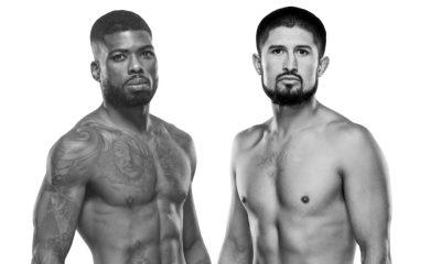 UFC Vegas 33
